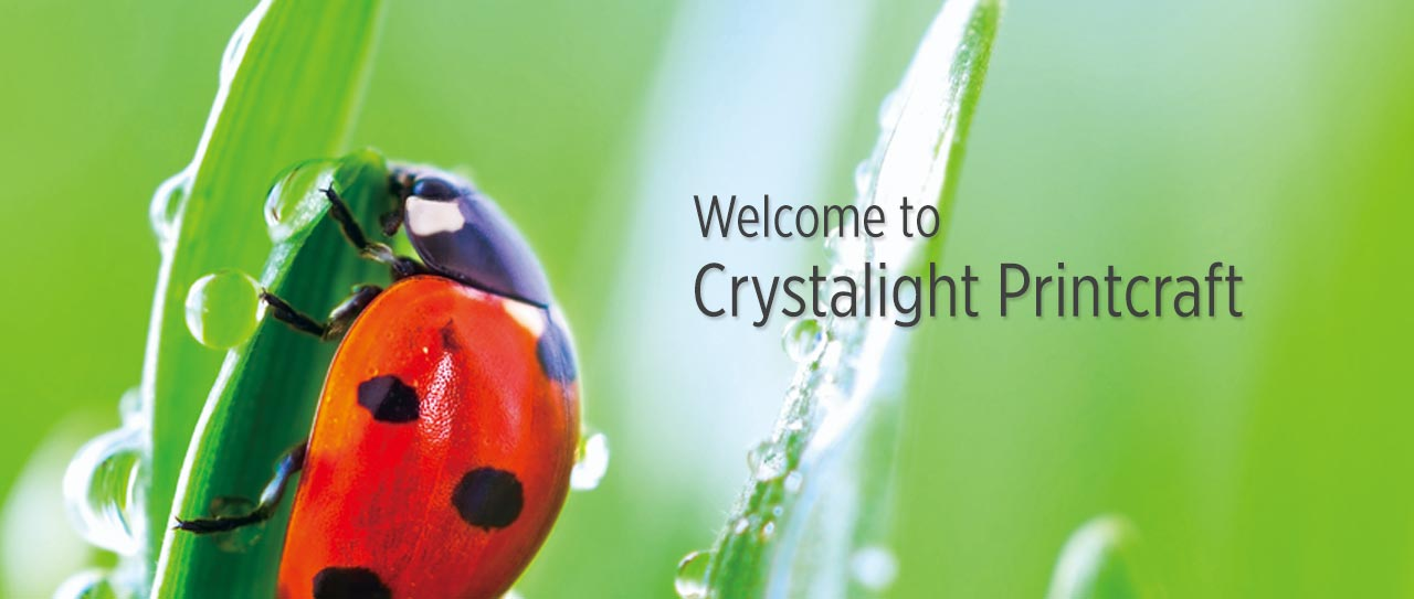 Welcome to Crystalight Printcraft